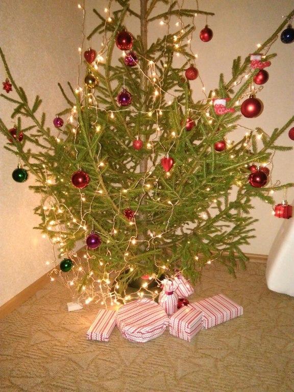 6 место конкурса чья елка лучше
